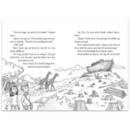 Jakten på arken