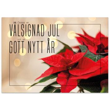 Julkort - Jul1574