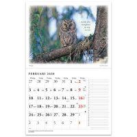 Naturkalender 2020 - Reine Jonsson
