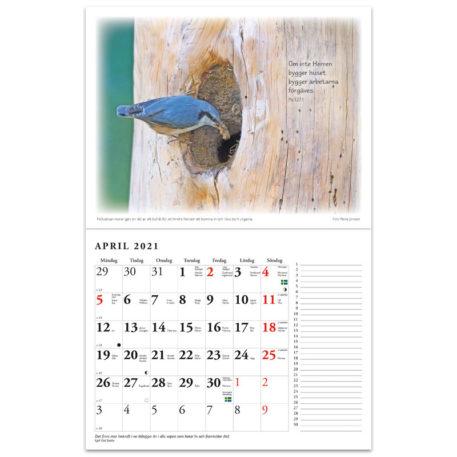Naturkalender 2021 - Reine Jonsson